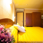 HOTEL PUCCINI 4*